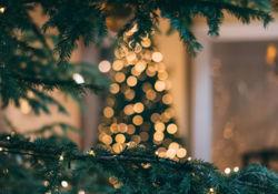 Nos idées de cadeaux pour Noël