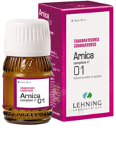 Lehning Arnica Complexe N° 1 Solution Buvable En Gouttes Fl/30ml à VALENCE