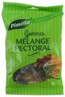 Pimelia Gommes Mélange Pectoral Sachet/100g à VALENCE