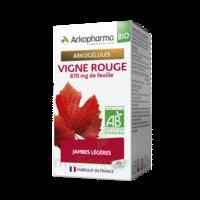 Arkogélules Vigne Rouge Bio Gélules Fl/45 à VALENCE