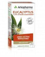 Arkogélules Eucalyptus Gélules Fl/45 à VALENCE
