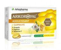 Arkoroyal Propolis Pastilles Adoucissante Gorge Guimauve Miel Citron B/24 à VALENCE