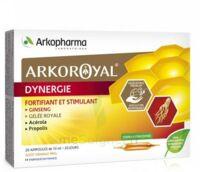 Arkoroyal Dynergie Ginseng Gelée royale Propolis Solution buvable 20 Ampoules/10ml à VALENCE