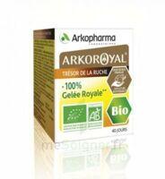 Arkoroyal 100% Gelée Royale Bio Gelée Pot/40g à VALENCE