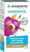 ARKOGELULES HARPAGOPHYTON, 150 gélules à VALENCE
