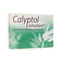 CALYPTOL INHALANT, émulsion pour inhalation par fumigation à VALENCE