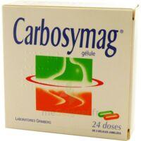 Carbosymag Gél 2plq/12+12 à VALENCE