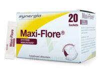 Maxi-flore Sachet Bte20 à VALENCE