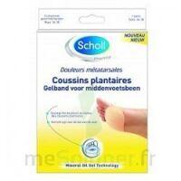 Scholl Coussin Plantaire Douleurs Métatarsales T2 à VALENCE