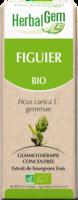 Herbalgem Figuier Macerat Mere Concentre Bio 30 Ml à VALENCE
