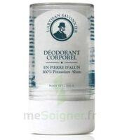 GRAVIER déodorant pierre d'alun bio certifié 115g à VALENCE