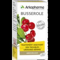Arkogelules Busserole Gélules Fl/45 à VALENCE