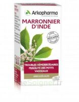 ARKOGELULES Marronnier d'Inde Gélules Fl/45 à VALENCE