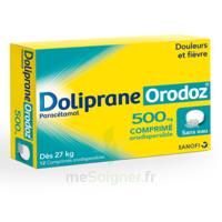 Dolipraneorodoz 500 Mg, Comprimé Orodispersible à VALENCE