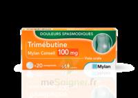 Trimebutine Mylan Conseil 100 Mg, Comprimé à VALENCE