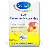 Scholl Pansements coricides cors à VALENCE