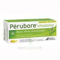 Perubore Caps Inhalation Par Vapeur Inhalation Plq/15 à VALENCE