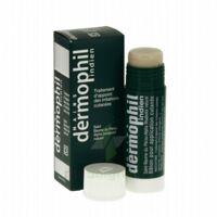 Dermophil Indien Pom Stick Girex/30g à VALENCE