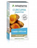 Arkogelules Curcuma Pipérine Gélules Fl/45 à VALENCE