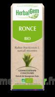 Herbalgem Ronce Macérat bio 30ml à VALENCE