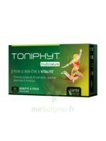 Santé Verte Toniphyt Multinature 30 Comprimés à VALENCE