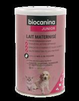 Biocanina Lait poudre maternisé B/400g à VALENCE