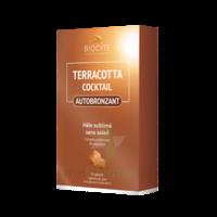 Terracotta Cicktail Autobronzant Comprimés B/30 à VALENCE