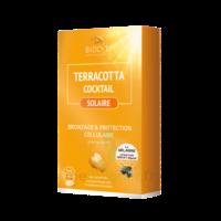 Terracotta Cocktail Solaire Comprimés B/30 à VALENCE