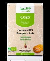 Herbalgem Gomme cassis bio B/24 à VALENCE