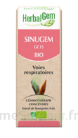 Herbalgem Sinugem Solution buvable bio Fl cpte-gttes/30ml à VALENCE