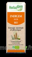 Herbalgem Energem Solution Buvable Bio Fl Cpte-gttes/30ml à VALENCE