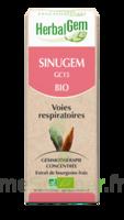 Herbalgem Sinugem Solution buvable bio Spray/15ml à VALENCE