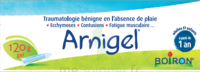Boiron Arnigel Gel T/120g à VALENCE