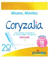Boiron Coryzalia Solution buvable unidose B/20 à VALENCE