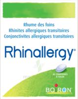 Boiron Rhinallergy Comprimés B/40 à VALENCE