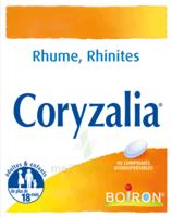 Boiron Coryzalia Comprimés Orodispersibles à VALENCE
