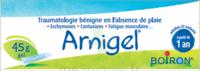 Boiron Arnigel Gel T/45g à VALENCE
